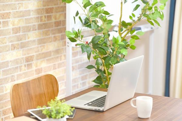 オフィス 植物