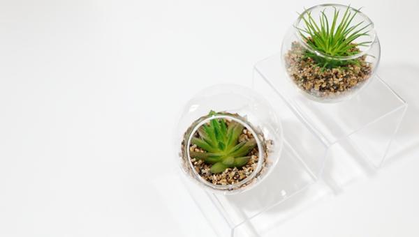 インテリアを考える日 4月10日 NIF インテリアファブリックス協会 観葉植物
