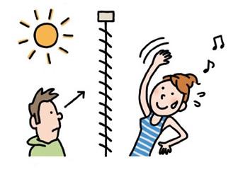 太陽の光量を調節し、路面などの下からの視線を遮断